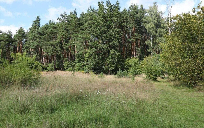 Działka budowlana na sprzedaż Sosnowiec, Maczki, Kolonia Cieśle  2143m2 Foto 5