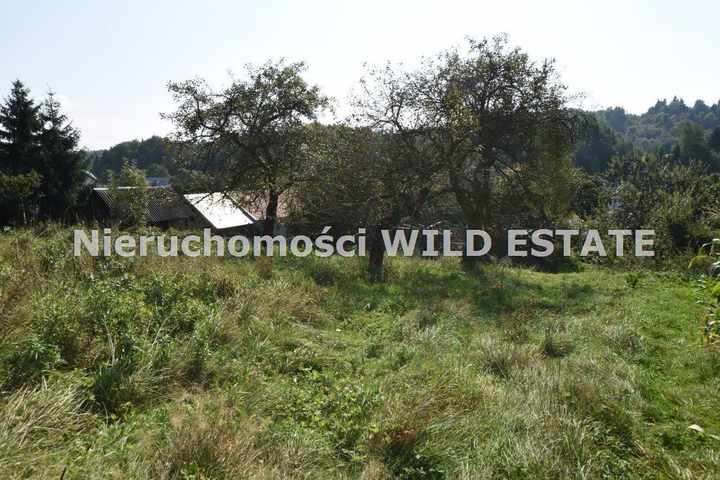 Działka rolna na sprzedaż Lesko, Bezmiechowa Dolna  21797m2 Foto 3