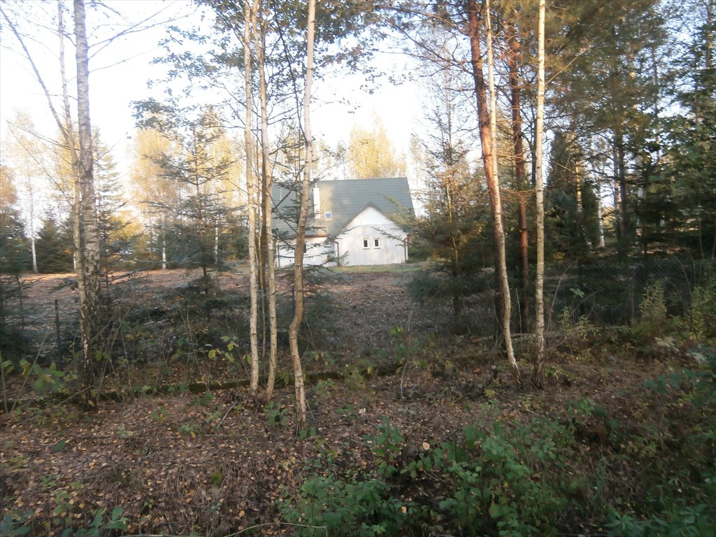 Dom na sprzedaż Przecław, Podlesie  140m2 Foto 2