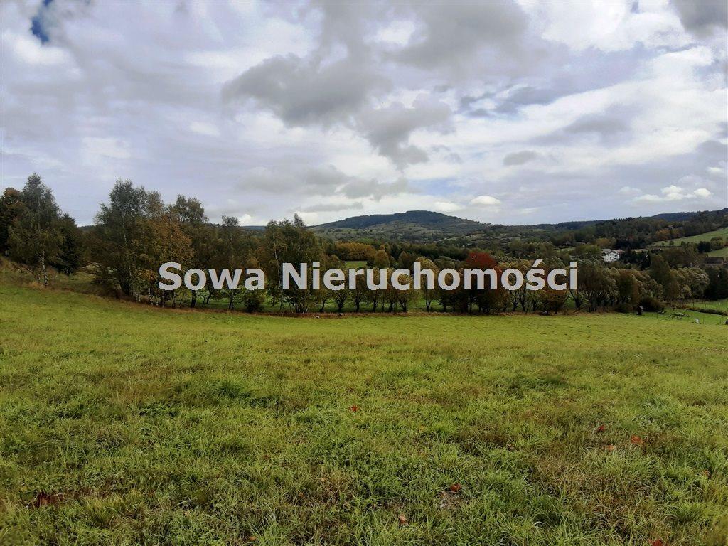 Działka inna na sprzedaż Sierpnica  3000m2 Foto 3