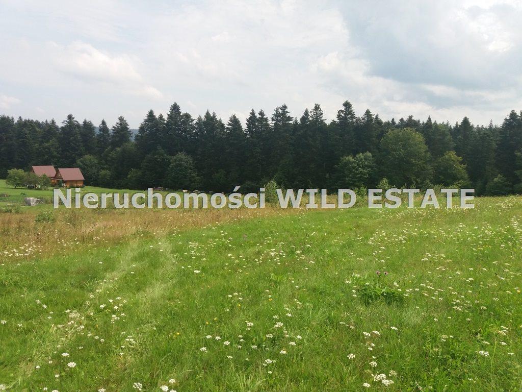 Działka rolna na sprzedaż Solina, Werlas  5011m2 Foto 3