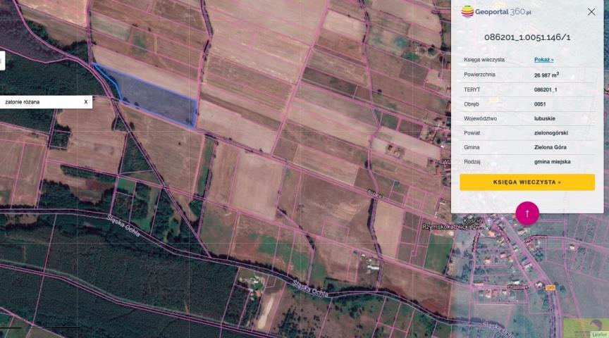 Działka rolna na sprzedaż Zielona Góra, Zatonie-Różana  26987m2 Foto 1