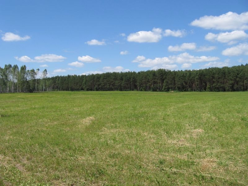 Działka rolna na sprzedaż Warkały  16606m2 Foto 1