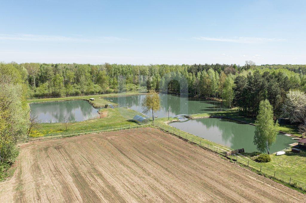 Działka siedliskowa na sprzedaż Zimnice, Piekarska  24000m2 Foto 9