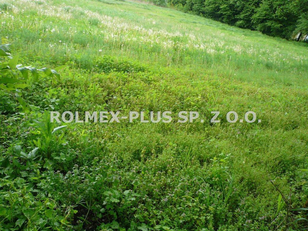 Działka budowlana na sprzedaż Wilkołaz  2040m2 Foto 1