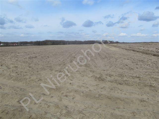 Działka rolna na sprzedaż Transbór  11200m2 Foto 5