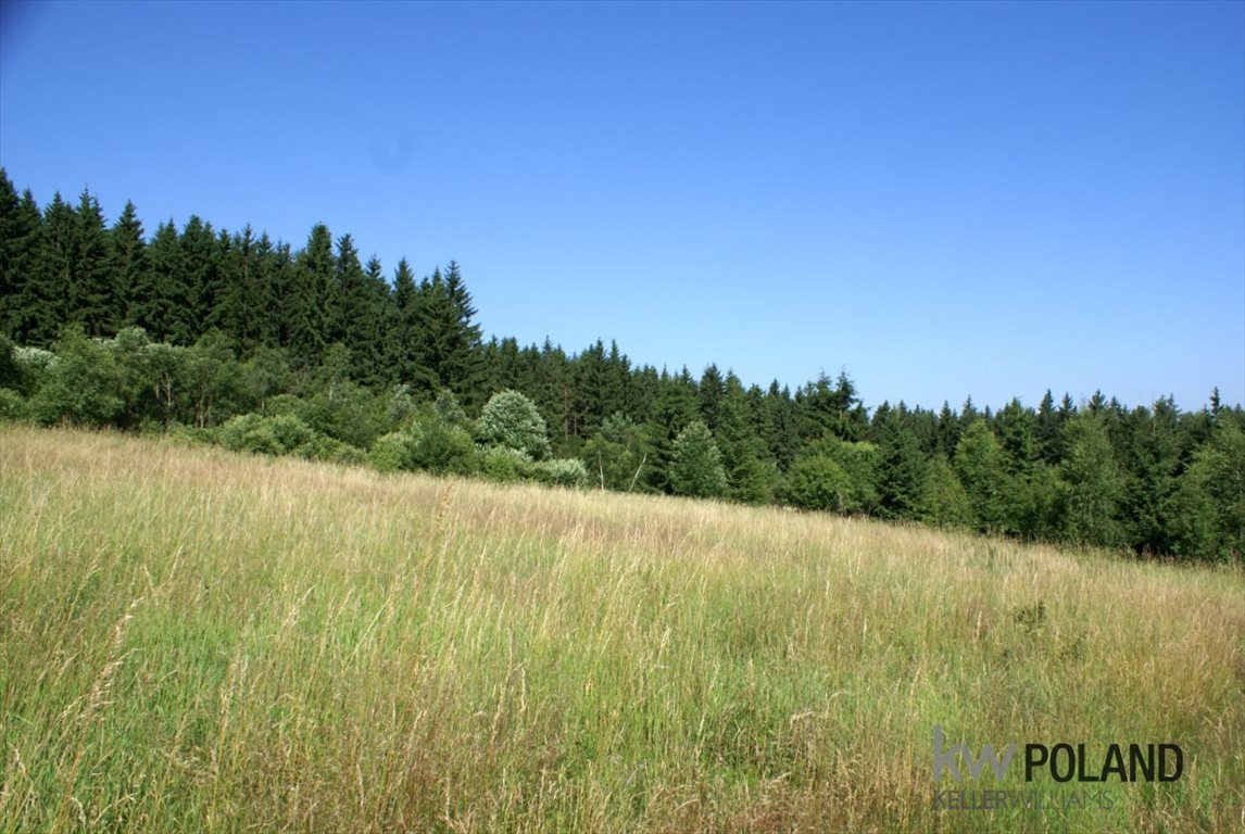 Działka rolna na sprzedaż Kudowa-Zdrój, Pstrążna  14309m2 Foto 10