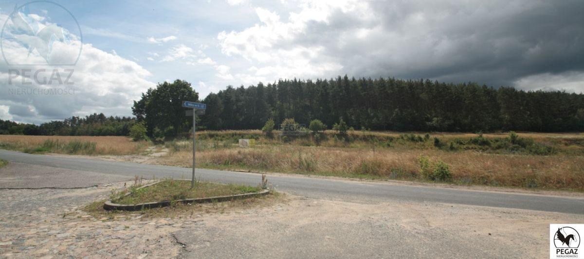 Działka rolna na sprzedaż Milcz, Holna / Zajęcza  6175m2 Foto 10