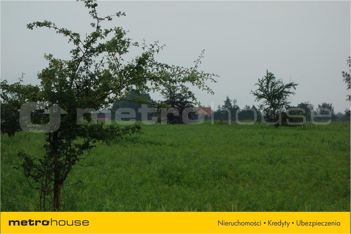 Działka rolna na sprzedaż Bogdaszowice, Kąty Wrocławskie  3000m2 Foto 2