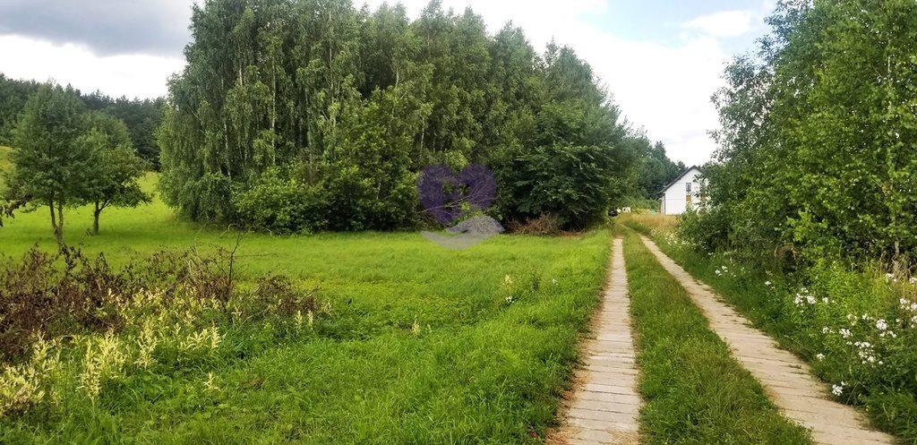 Działka inna na sprzedaż Studzianki, Wasilkowska  3536m2 Foto 11