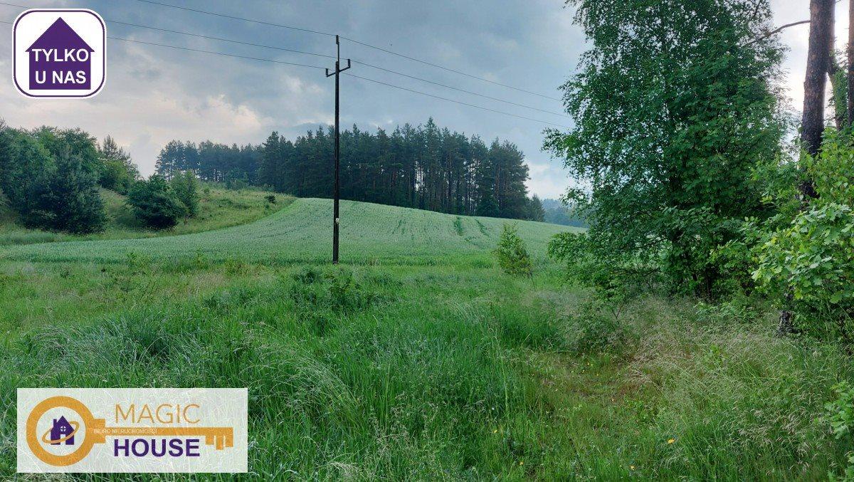 Działka leśna na sprzedaż Gołubie  18900m2 Foto 2