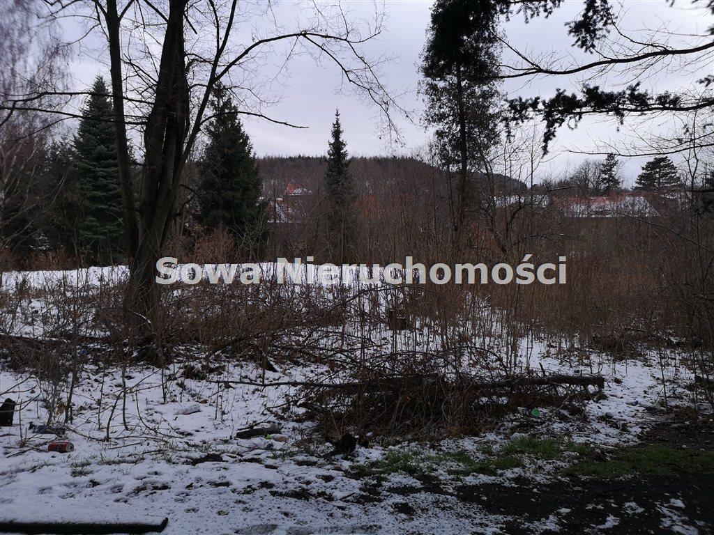 Działka inna na sprzedaż Wałbrzych, Biały Kamień  6000m2 Foto 7