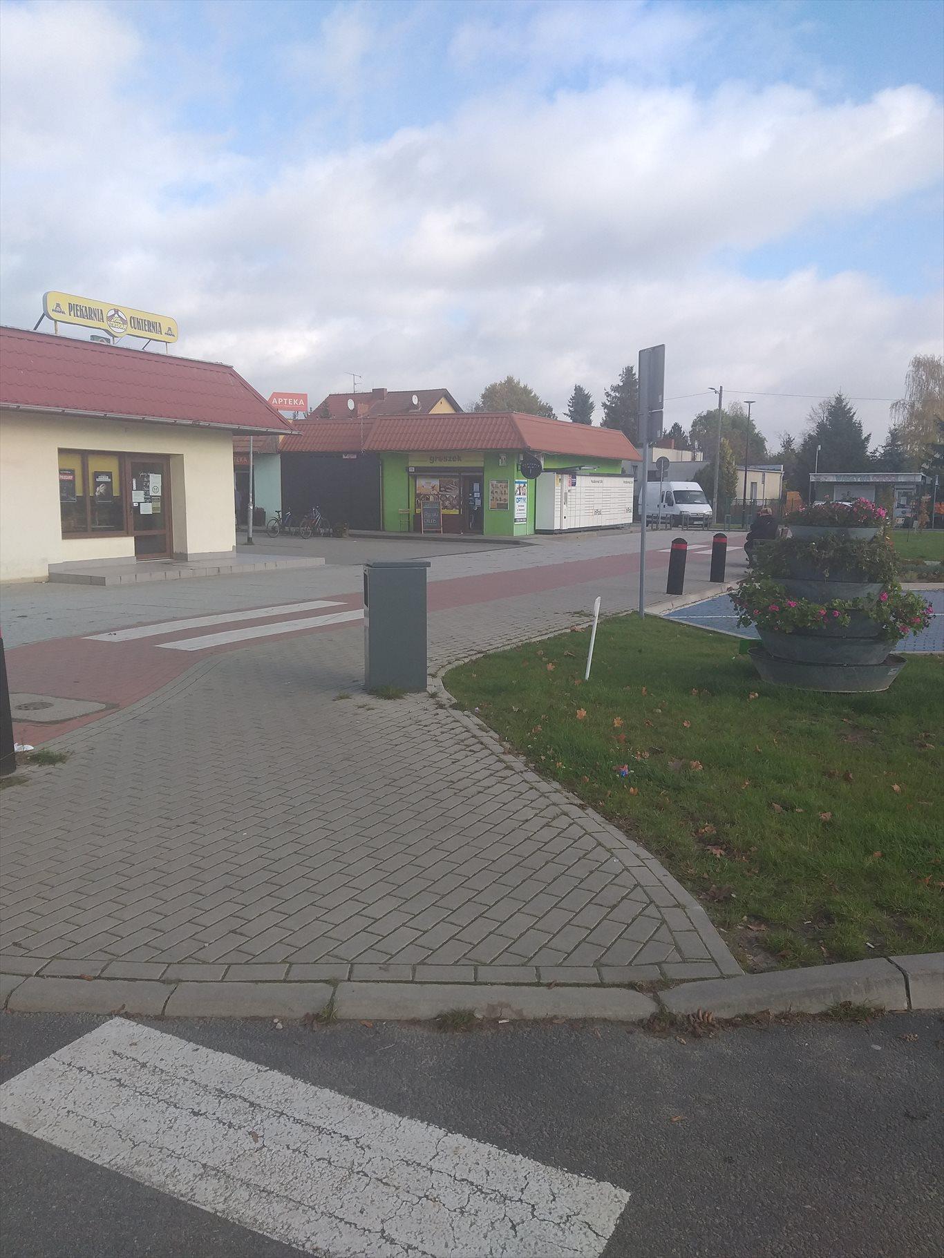 Działka inwestycyjna na sprzedaż Jerzykowo, Sosnowa  11700m2 Foto 6