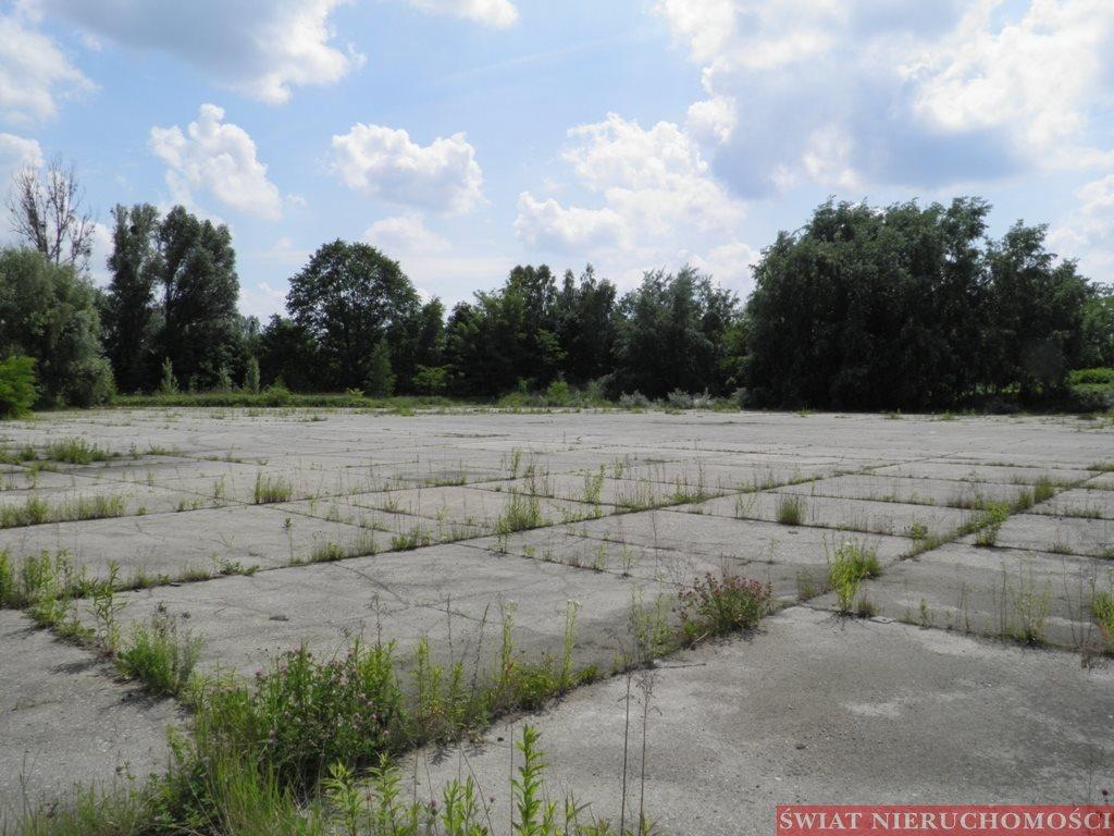 Działka przemysłowo-handlowa na sprzedaż Wrocław, Zakrzów, Zakrzów  8360m2 Foto 3