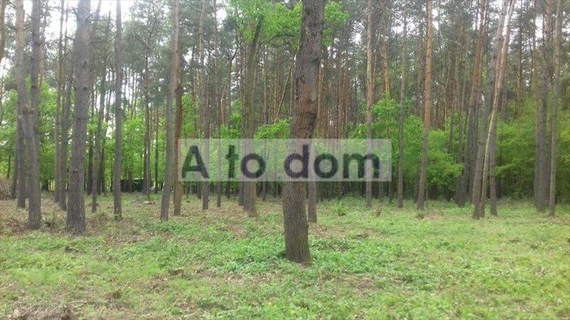Działka rolna na sprzedaż Kobyłka  8296m2 Foto 5