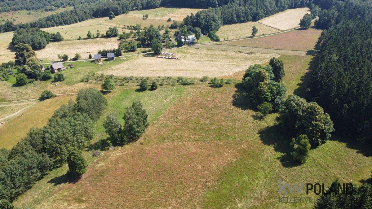 Działka rolna na sprzedaż Kudowa-Zdrój, Pstrążna  4386m2 Foto 2