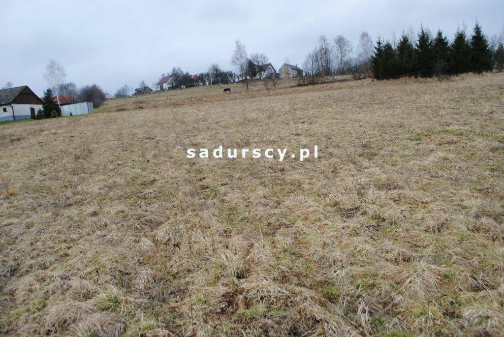 Działka rolna na sprzedaż Głogoczów  5400m2 Foto 4
