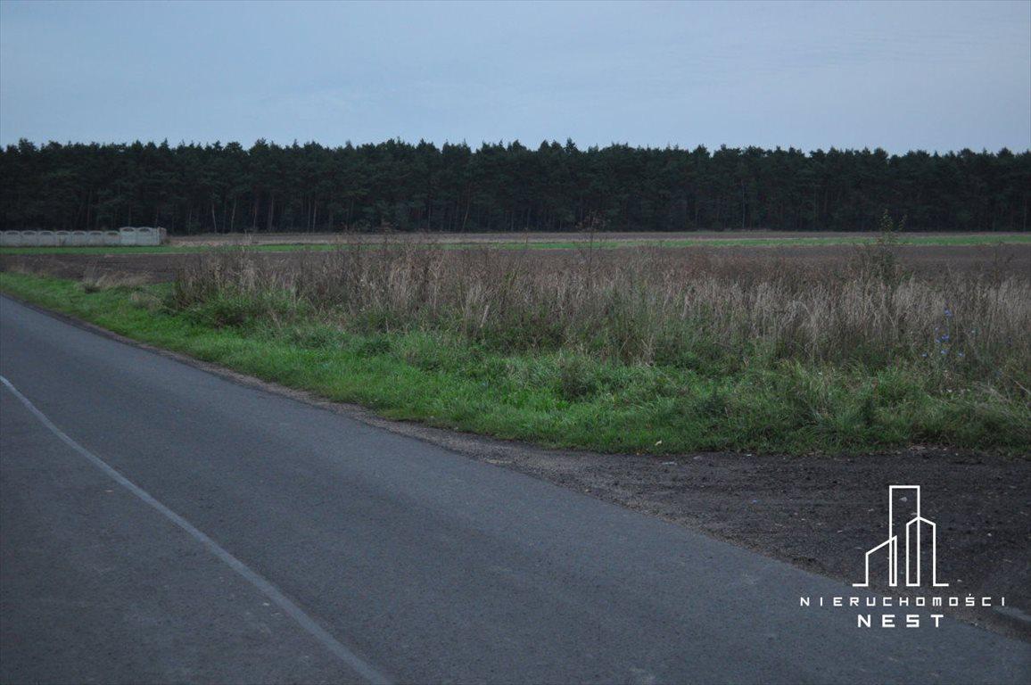 Działka rolna na sprzedaż Czmoniec, CZMONIEC  3300m2 Foto 3