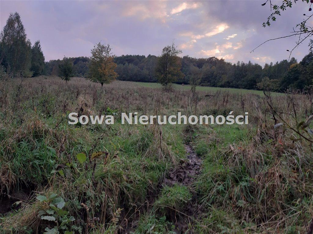 Działka inna na sprzedaż Michałkowa  2259m2 Foto 6