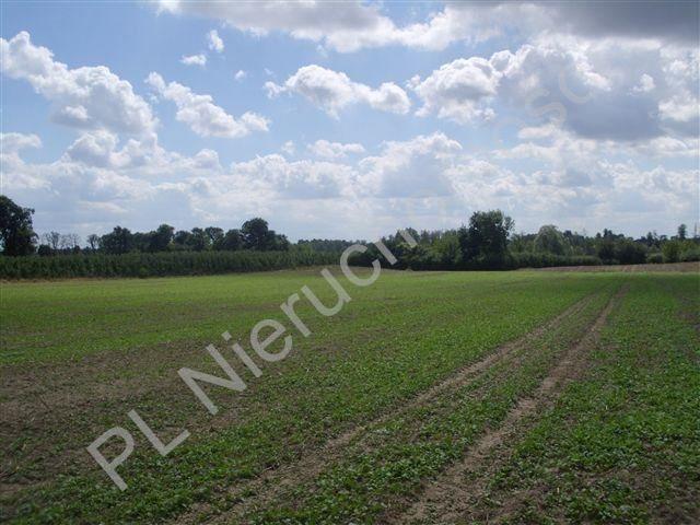 Działka rolna na sprzedaż Pasikonie  80347m2 Foto 1