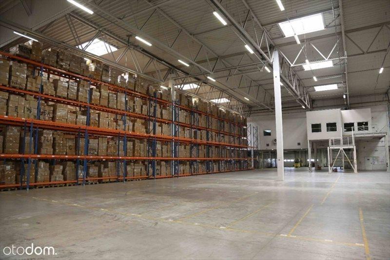 Lokal użytkowy na wynajem Powierzchnia logistyczna do wynajęcia 12 000 m kw.  12000m2 Foto 3