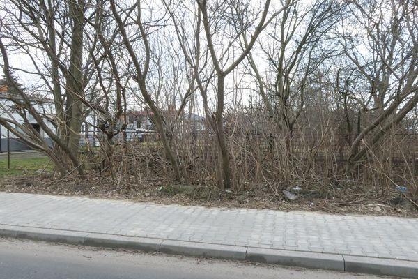 Działka rolna na sprzedaż Radom, Halinów, Garbarska  5413m2 Foto 3