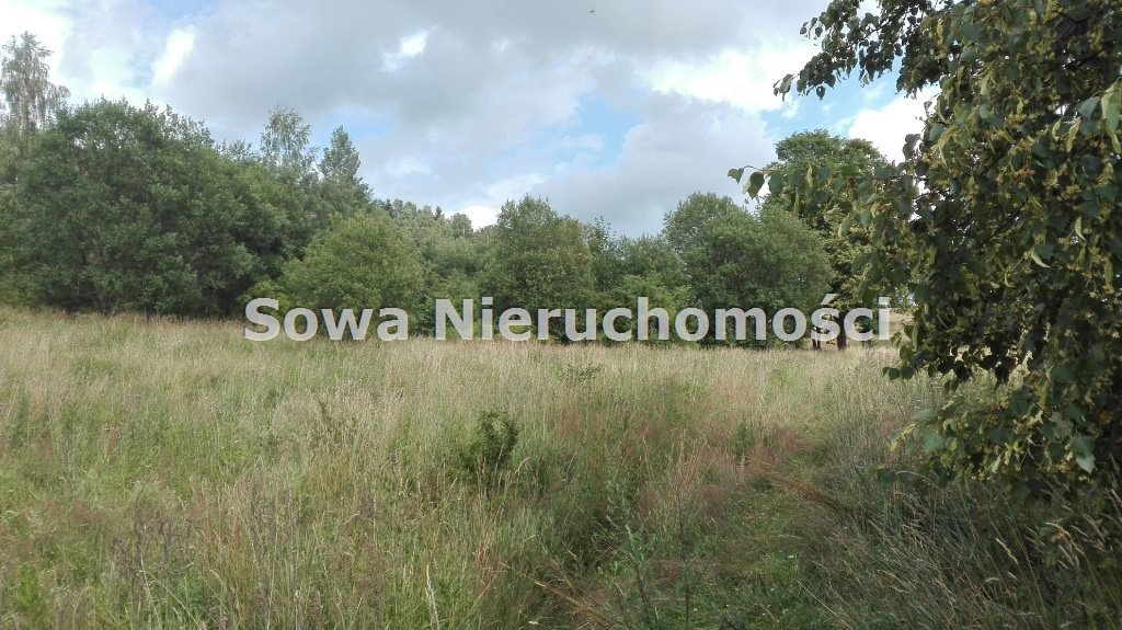 Działka inna na sprzedaż Mieroszów, okolice Mieroszowa  14209m2 Foto 9