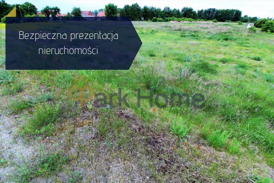 Działka przemysłowo-handlowa na sprzedaż Nowa Sól, Otyń  4300m2 Foto 1