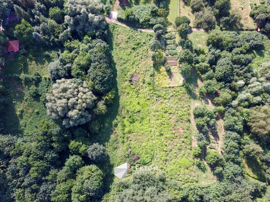 Działka leśna na sprzedaż Kraków, Salwator, Panoramiczna  4100m2 Foto 4