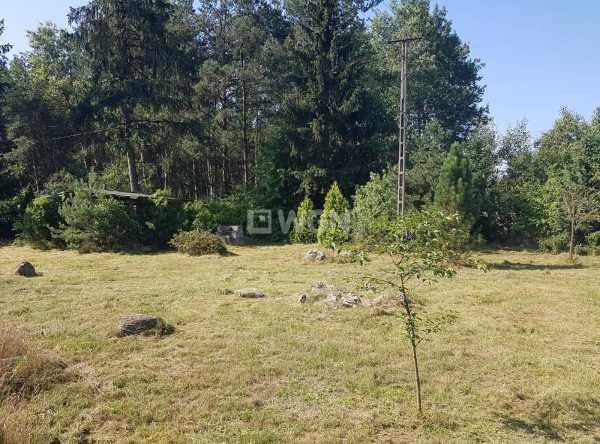 Działka leśna na sprzedaż Radomsko, Ładzice, Brodowe  11600m2 Foto 3