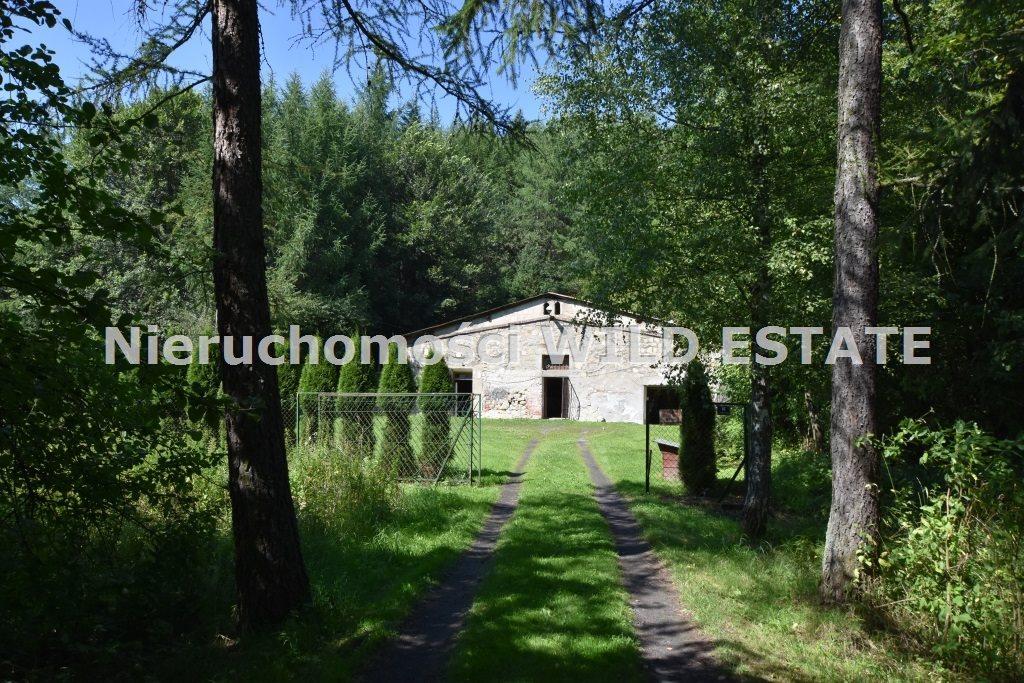 Lokal użytkowy na sprzedaż Lesko, Lesko  294m2 Foto 4