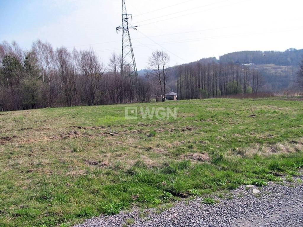 Działka budowlana na sprzedaż Chmielnik, Chmielnik, Chmielnik  1509m2 Foto 6