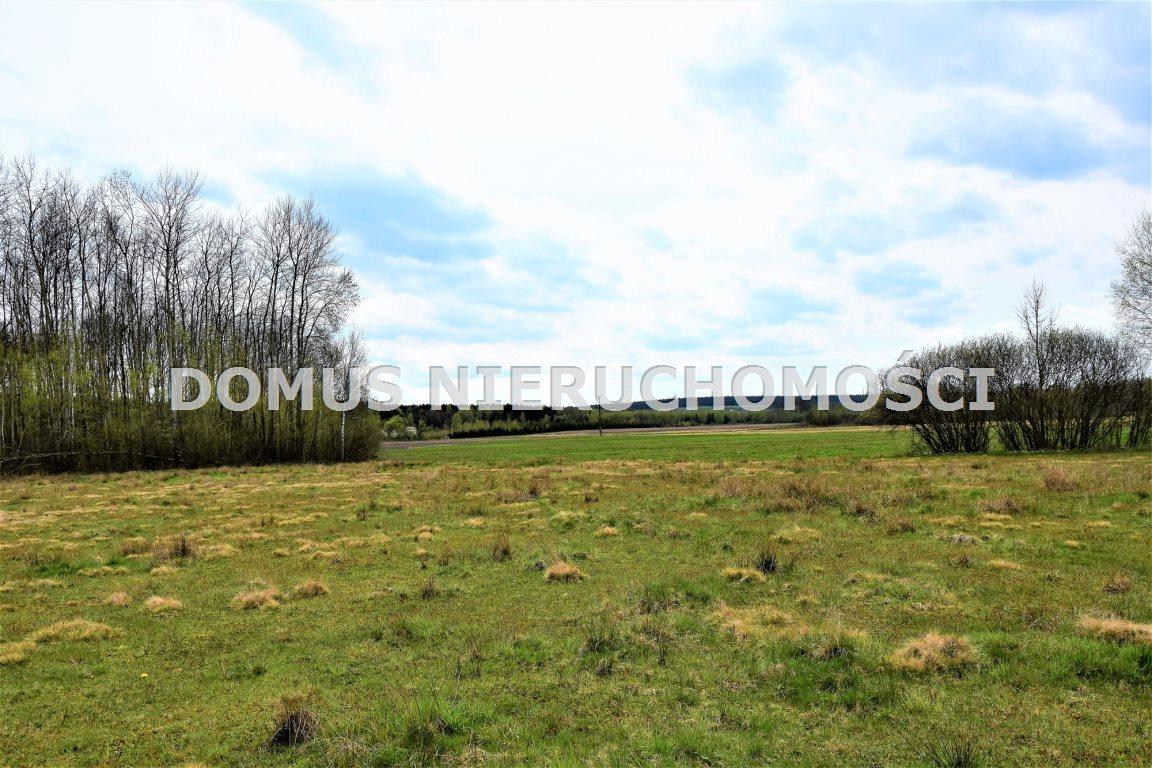 Działka leśna na sprzedaż Grębosze  44100m2 Foto 6