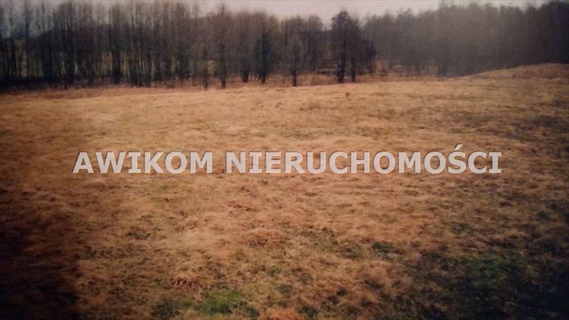 Działka rolna na sprzedaż Przerośl  54373m2 Foto 5