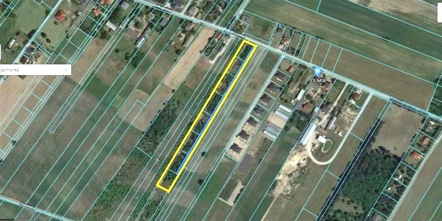 Działka budowlana na sprzedaż Jachranka, Jachranka  9227m2 Foto 3