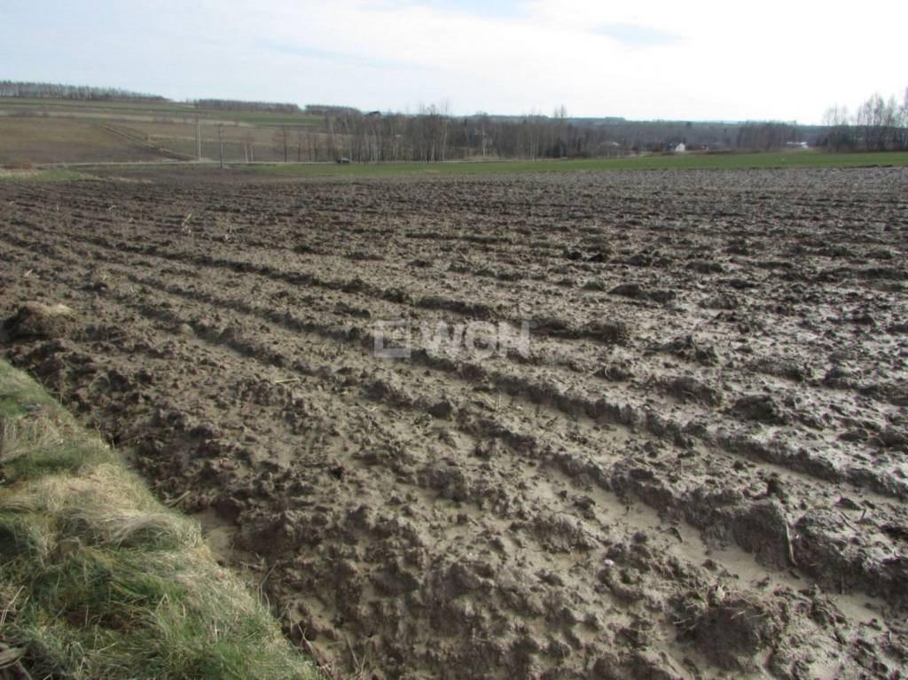 Działka rolna na sprzedaż Wola Zgłobieńska, Wola Zgłobieńska, Wola Zgłobieńska  4600m2 Foto 3