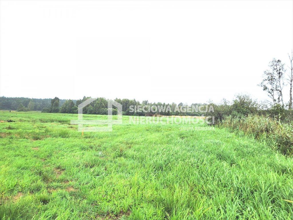 Działka rolna na sprzedaż Sasino  38600m2 Foto 2