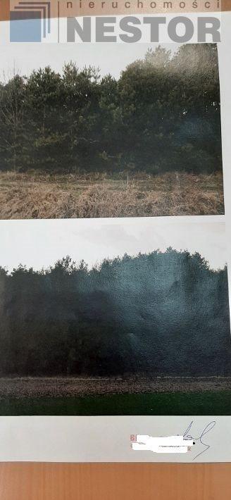 Działka leśna na sprzedaż Hołubla  25700m2 Foto 1