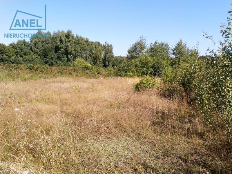 Działka inna pod dzierżawę Mikołów, Borowa Wieś  541m2 Foto 4