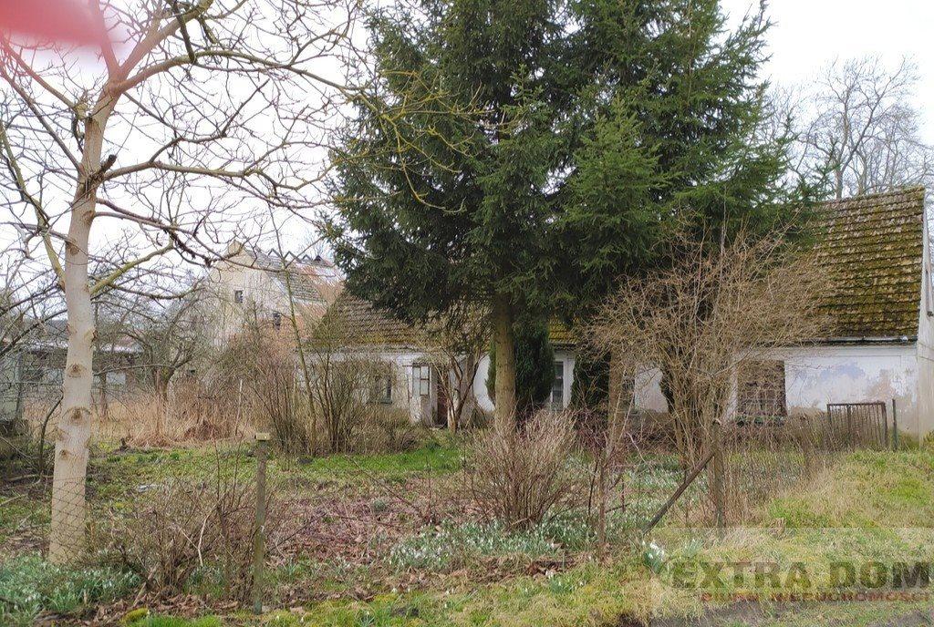 Dom na sprzedaż Maszewo  1700m2 Foto 1
