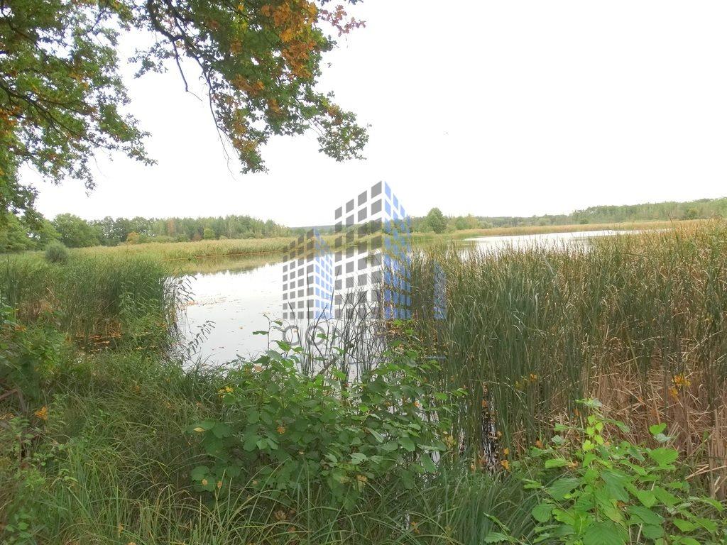 Dom na sprzedaż Legnica  1700m2 Foto 5