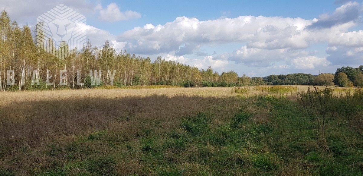 Działka rolna na sprzedaż Sułkowice  102100m2 Foto 2