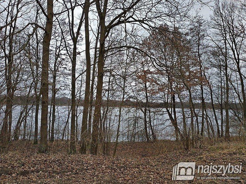 Działka rolna na sprzedaż Nętno, Wieś  2000m2 Foto 4
