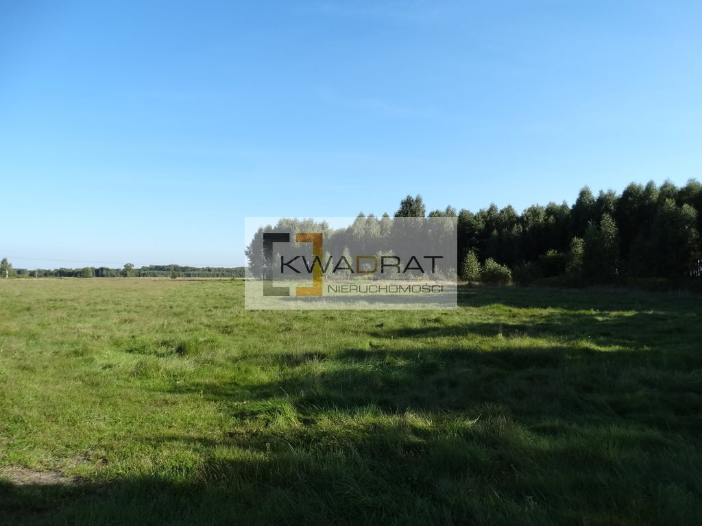 Działka rolna na sprzedaż Brzozowica  36300m2 Foto 1