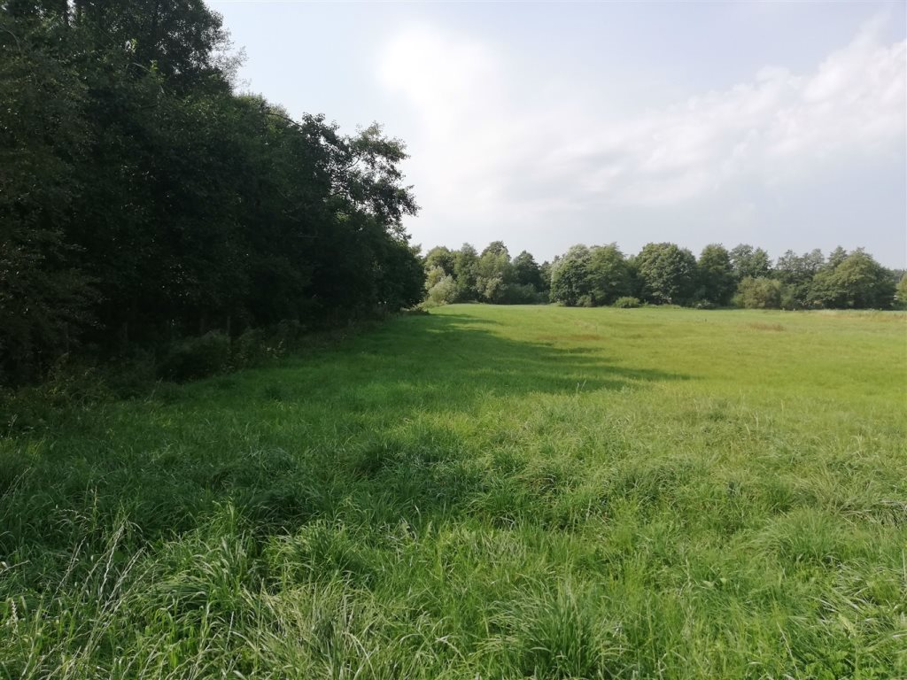 Działka rolna na sprzedaż Luzino, Zgody  12593m2 Foto 1