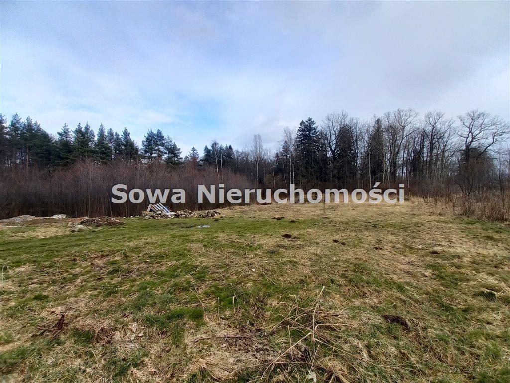Działka budowlana na sprzedaż Staniszów  2873m2 Foto 1