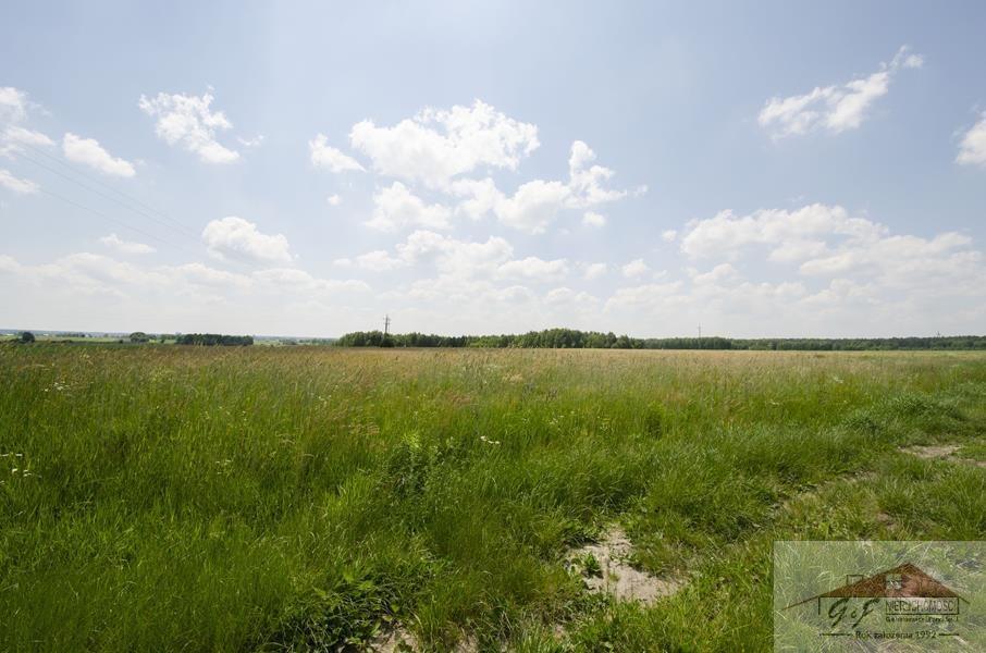 Działka przemysłowo-handlowa na sprzedaż Moszczanica  53900m2 Foto 3