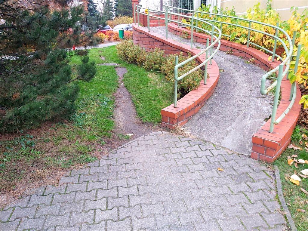 Lokal użytkowy na sprzedaż Poznań, Nowe Miasto, Leszka 31F  61m2 Foto 2