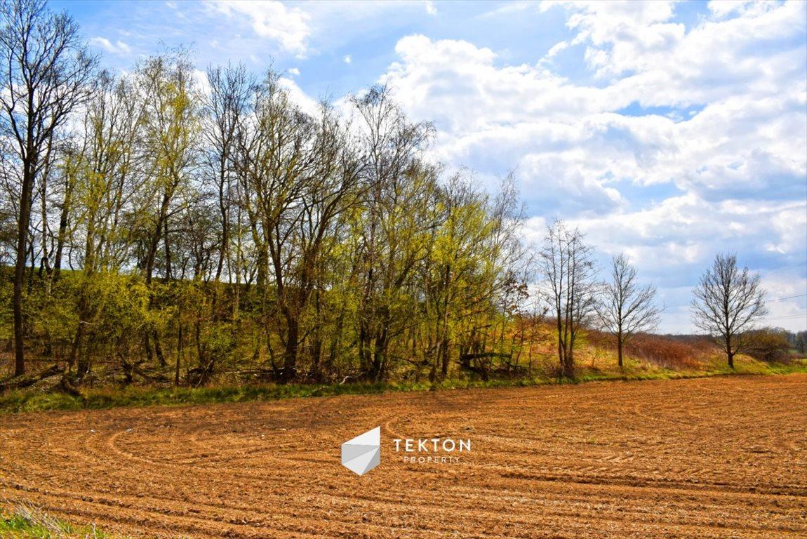 Działka siedliskowa na sprzedaż Taczów Mały, ul. Leśna  3000m2 Foto 7