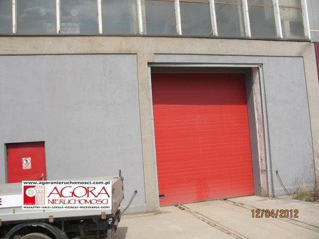 Lokal użytkowy na sprzedaż Kraków, Rybitwy, Rybitwy  2000m2 Foto 4